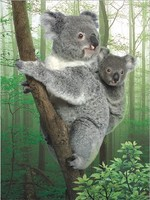Children Gift Use and Australia Regional Feature 3D Lenticular Kola Picture