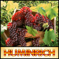 Huminrich Quick Release Promote Growth Organic Liquid Fertilizer For Grapes