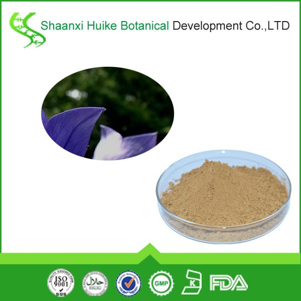 korean bellflower root/herbal store/herbal plants