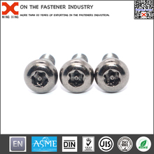 Economic and reliable electronic accessories security screw for certificates