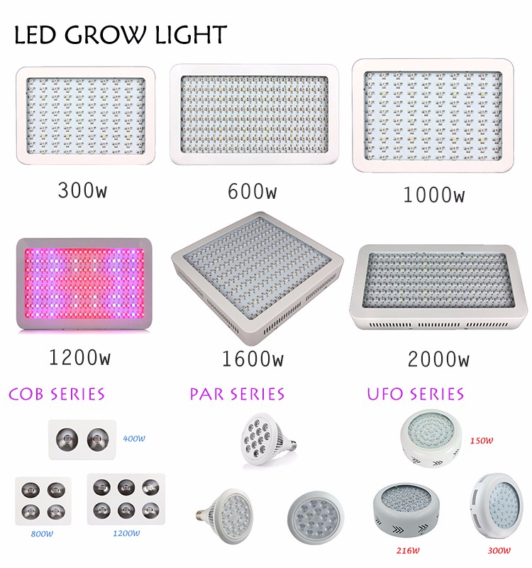 Honest Manufacturer SINOWELL 600 watt led grow lights