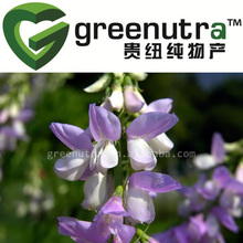 Goats Rue Extract