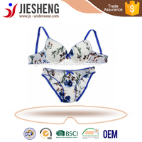 Wholesale type printing bra and panty for mature women wear(Accept OEM)