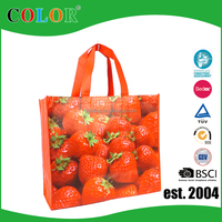 Wenzhou factory CMYK print bag pp non woven reusable bag fruit bag