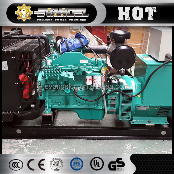 Excellent and Eco-friendly Natural Gas Generator Biogas Generator Price