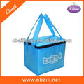 food delvery cooler bag