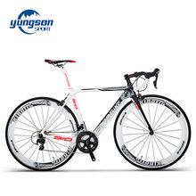 Chinese supplier cheap carbon fiber bike carbon fiber bike