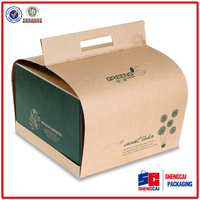 Recycled Cardboard Folding Brown Kraft Paper Box for Food