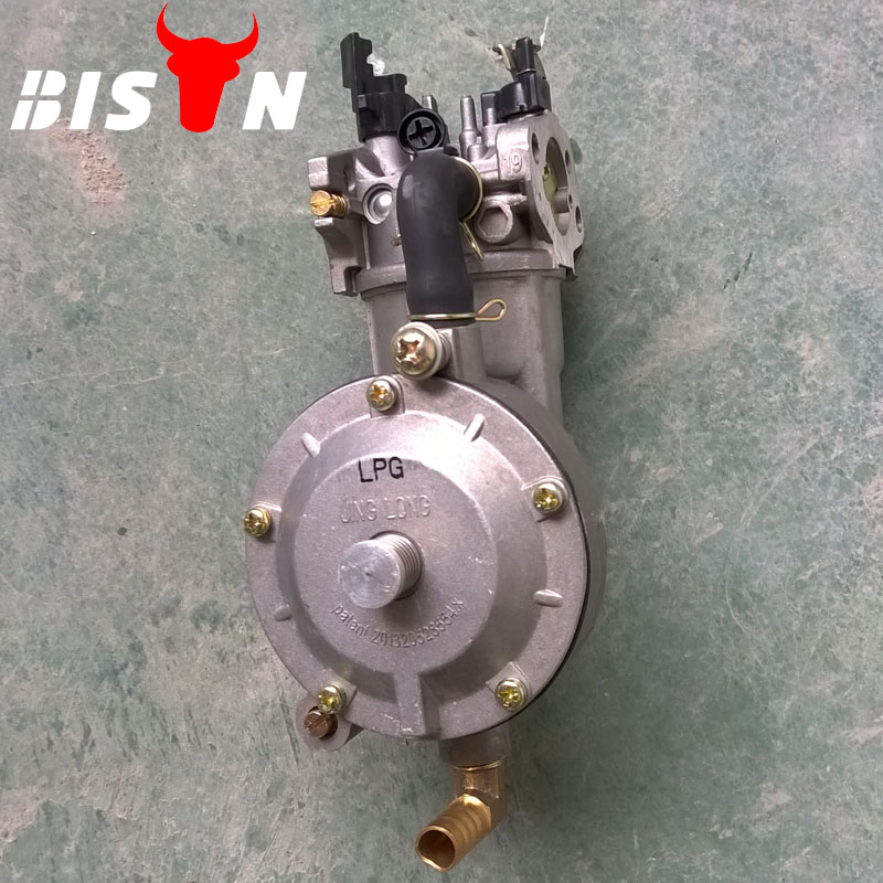 BISON(CHINA) 190F LPG Generator Carburetor Nigeria