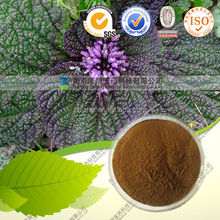Powde form Lamiophlomis Rotata Extract relieve pain herb