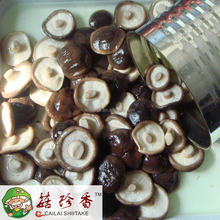 Canned premium shiitake mushroom in brine drums