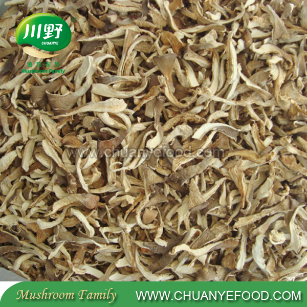 2017 High Quality Bulk Dried Oyster Mushroom Dry Oyster Price