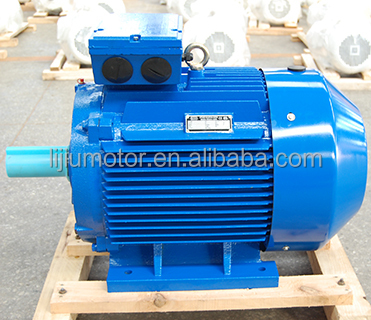 IE2 High Efficiency Totally Enclosed Three Phase Asynchronous Electric Motor