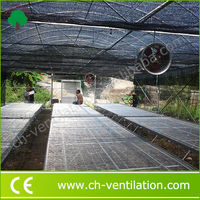 Greenhouse System integrator Steel Tube greenhouse for flowers