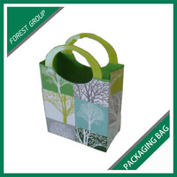 NEW STYLE VEGETABLE PACKAGING PAPER BAGS WITH PLASTIC HANDLES
