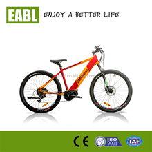 CE Dirt start motor mountain electric bike with 36v 8.8ah lithium battery