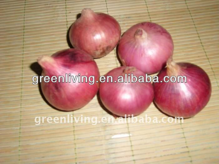 India fresh red onion (3-5cm,5-7cm,7-9cm,8-11cm)