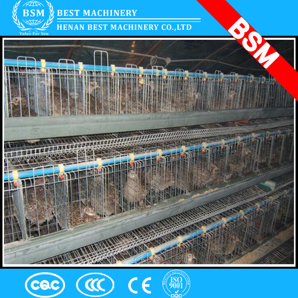3-6tiers full automatic broiler/meat chicken cages/coops for sale