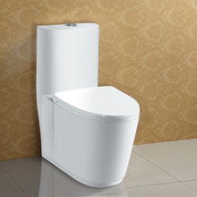 Siphon S trap 300mm Glaze White Ceramic One Piece Toilet