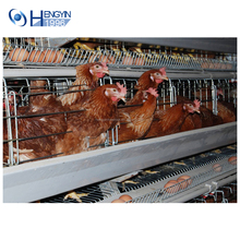 High Quality Chinese manufacturer design Poultry farm Chicken Egg Broiler Cage / Layer Poultry Cage