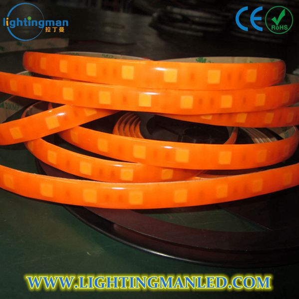 2014 new products shenzhen rgb glue led strip 5050 dsq-fs3528bn30-f5 strip