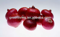 market fresh red onion price, China(3-5cm,5-7cm,7-9cm,8-11cm)