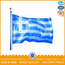 Simple Design Promotional Flag Publicity