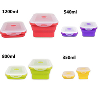 2016 100% food grade silicone foldable food box, vacuum pump food container
