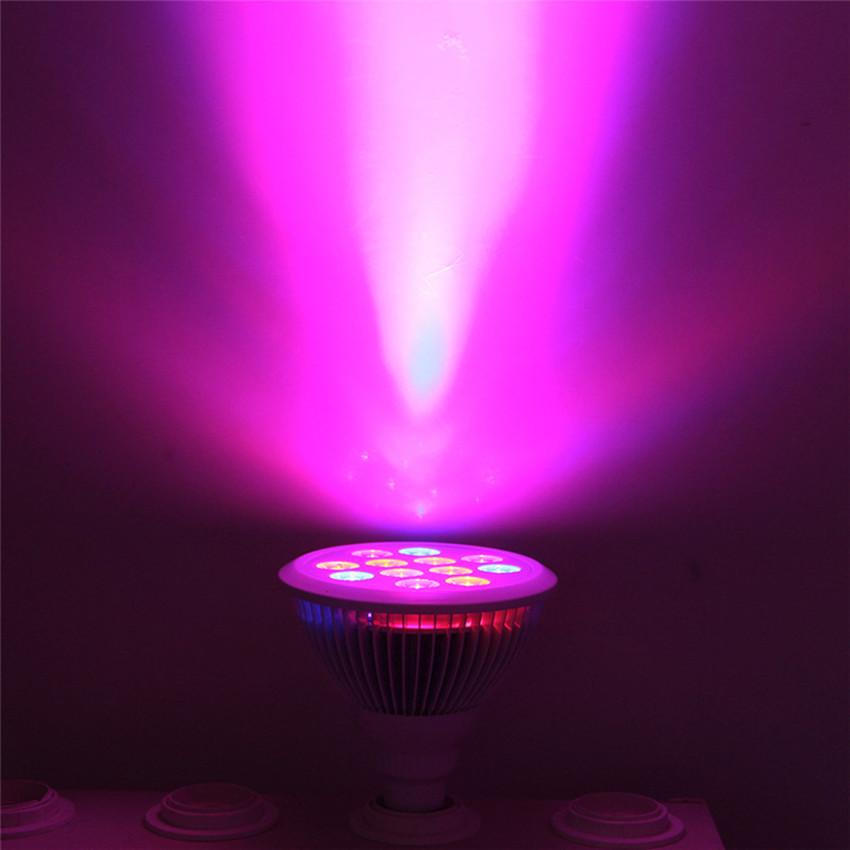 led grow light red blue <strong>bulb</strong> e27 <strong>bulbs</strong> home depot greenhouse for vegetable used