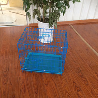 blue Wire Folding Pet Puppy Kennel