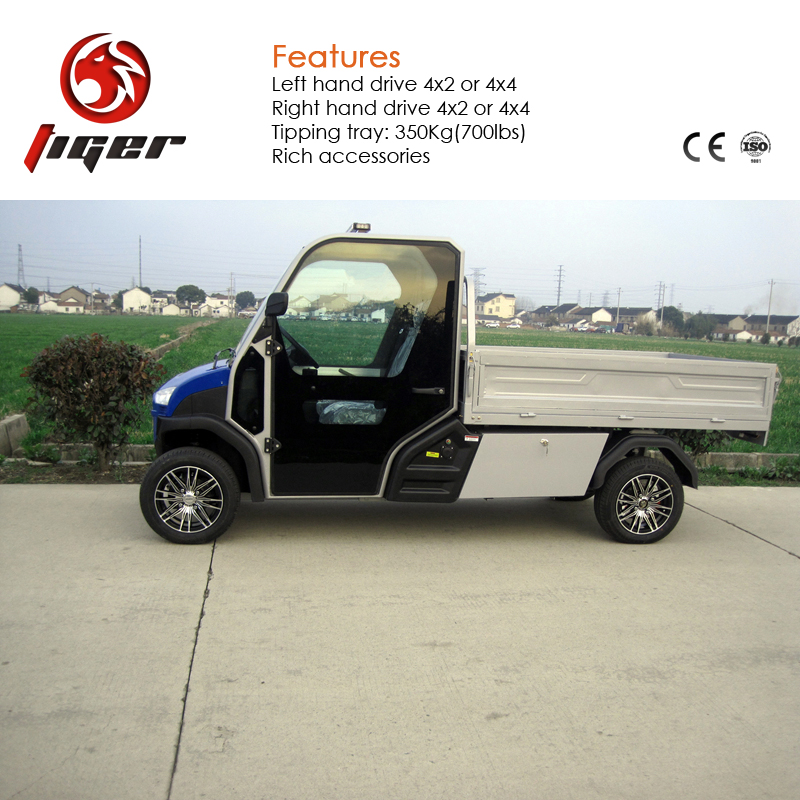 China factory young older driving electric car two seater mini cars street legal for sale