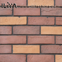 Cellar villa coffee bar hotel wall old brick thin antique interior brick