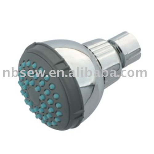 overhead shower / shower head