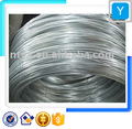 Steel Wire ( Hot Sale !!!)