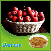 100% Pure natural and factory supply hawthorn fruit extract with high quality