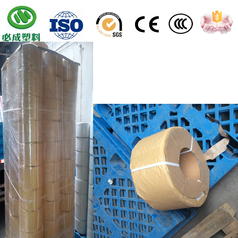 Transparent Or Color Packaging Material PP Polyester Bundle Strap