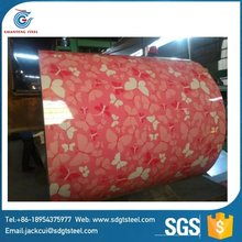 Beautiful printing steel coil wholesale/ppgl/ppgi