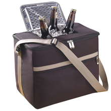 New fashion promotional cooler bag