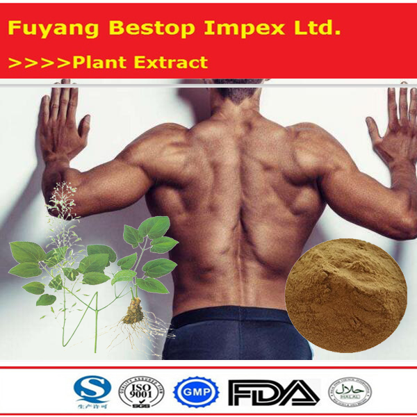 feng du natural bee extract Pure Bee Venom Powder For Sale