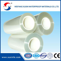 PET plastic wrapping film