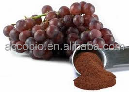 High Quality with Good Price Grape seed/Skin/Leaf Extract in stock, Proanthocyanidins(OPC) 95%