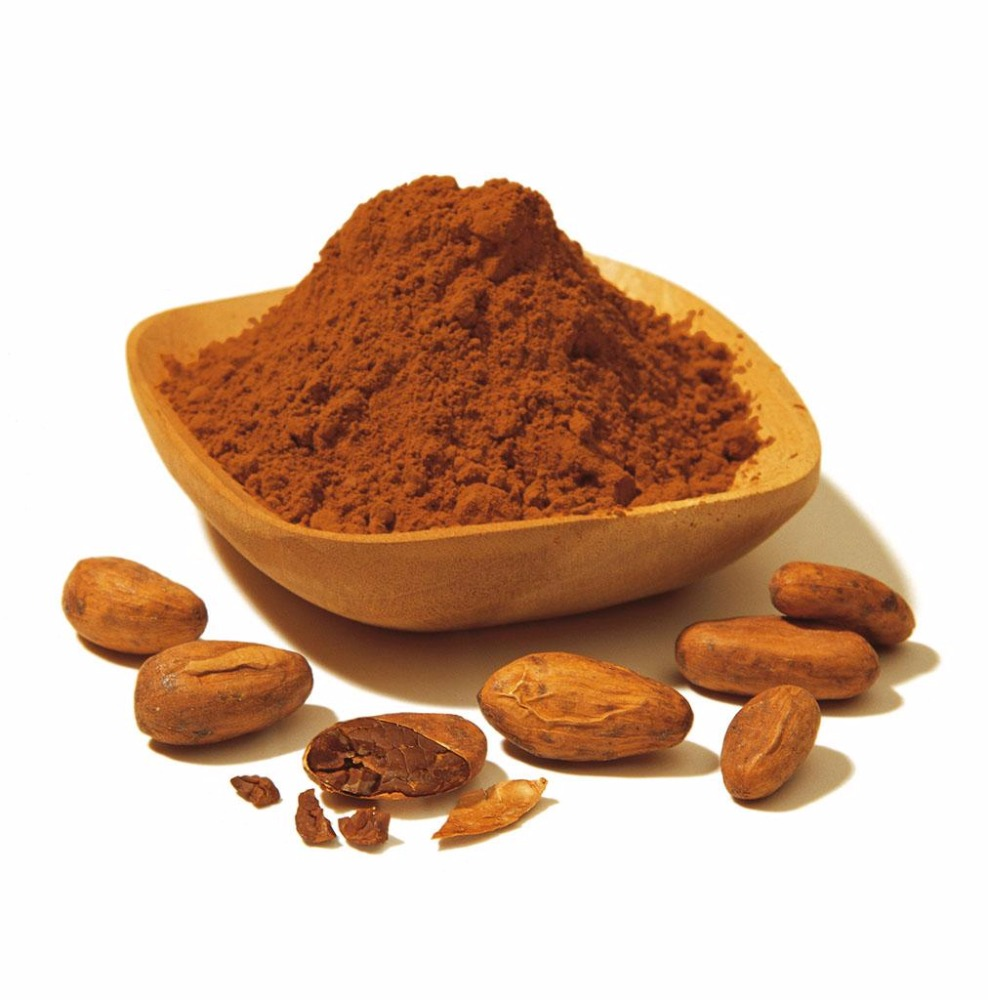 Alkalized Cocoa Powder 25KG Bag Manufacturer Pricing