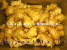 New Season Fresh Ginger (with picture)