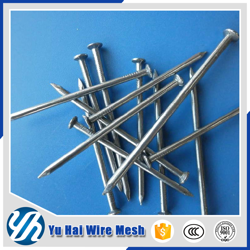 Hot sale 10cm length steel stainless steel concrete nails in china factory