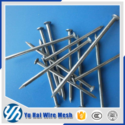 my test 10cm length steel concrete nails in china factory