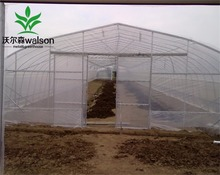 8m width HIGH TUNNEL PLASTIC GREENHOUSE film greenhouses