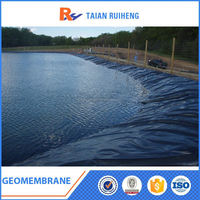Durability Polietileno Geomembrane For Pool