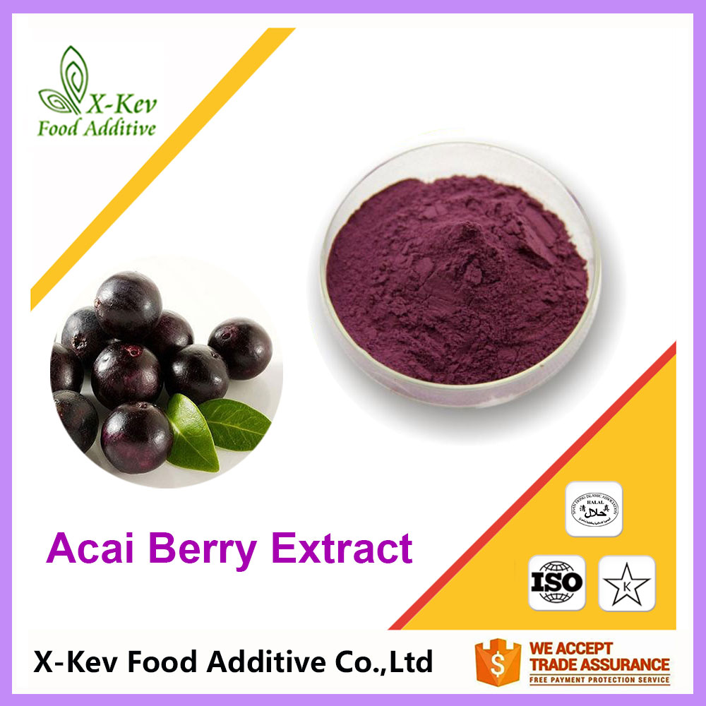 Wholesale Price 4:1 10:1 20:1 Fresh Acai Berry Fruit Extract Powder