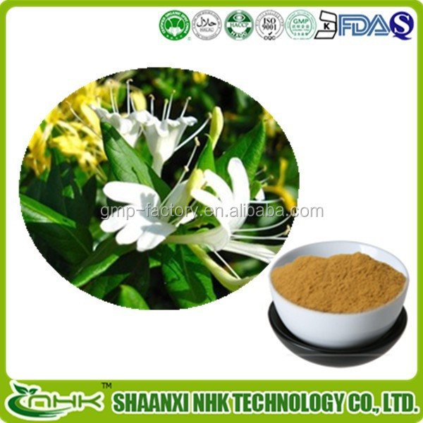 GMP factory supply high quality Honeysuchle Flowers Extract