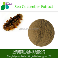 Anti-cancer Sea Cucumber Extract Powder